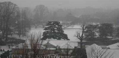 事務所からの眺望(冬)
